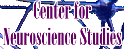 Center for Neuroscience Studies