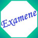 Programare examene - sesiunea de iarnă, 2019-2020 - Licenţă, IF